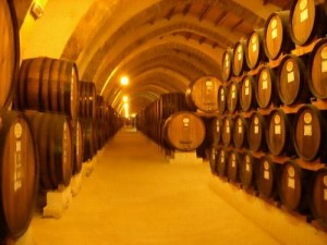 Wine barrels in Marsala