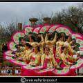 Blossom almond tree festival agrigento