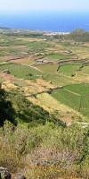 The cultivated plain of Ghirlanda in Pantelleria